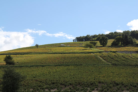 cote_brouilly_montagne