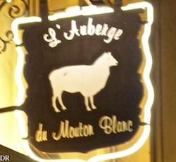 mouton_blanc_pano