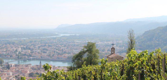 コート・デュ・ローヌのワイン生産者 カーヴ・ド・タン Cave de Tain